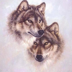 Diamanttavla Wolf Lovers 50x50