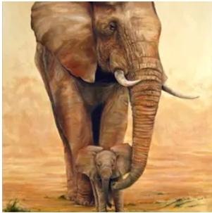 Diamanttavla Elephant With Baby 40x50