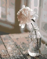Paint By Numbers Vit Pion I Glasflaska 40x50