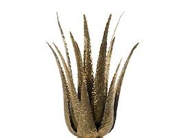 Ljusstake Aloe Vera