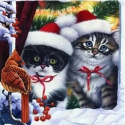 Diamanttavla Christmas Cats 40x50