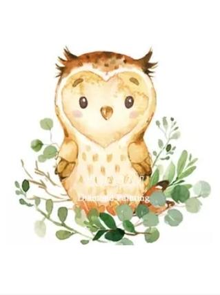 Diamanttavla Pretty Owl 30x40