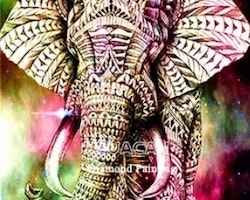 Diamanttavla Colored Elephant With Pattern 40x50