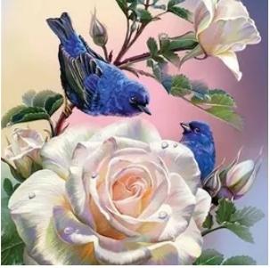 Diamanttavla Birds And Roses 40x50
