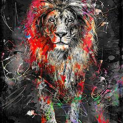 Diamanttavla Abstract Color Lion 50x80
