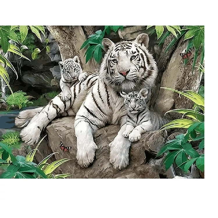 Diamanttavla White Tigers 40x50