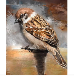 Diamanttavla Sparrow Bird 30x40