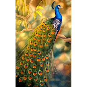 Diamanttavla (R) Beautiful Peacock 50x70