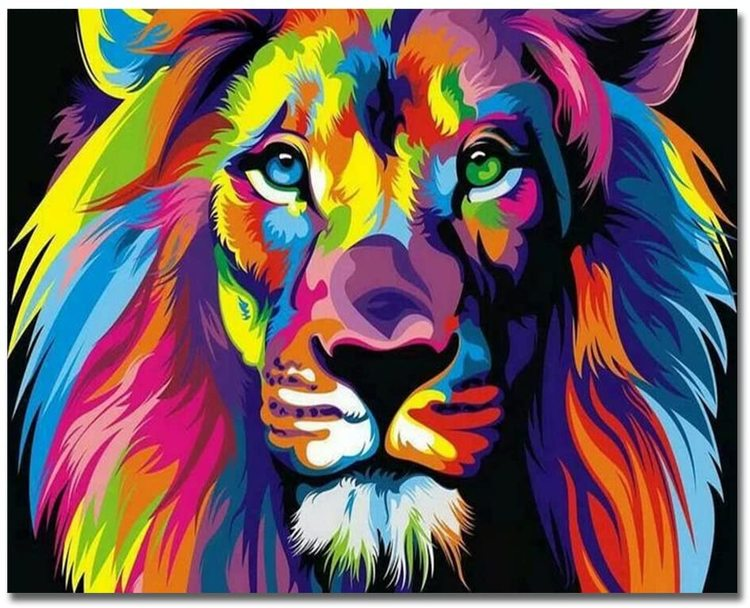 Paint By Numbers Colorful Lion 40x50