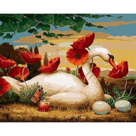 Paint By Numbers Svan Vallmo 40x50