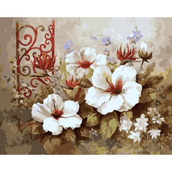 Paint By Numbers Red And White Flower 40x50