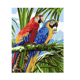 Paint By Numbers Parrots
