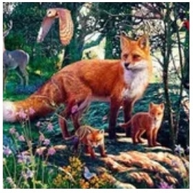 Diamanttavla Foxfamily In Nature 70x50