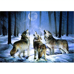 Diamanttavla Woodwolves 40x50