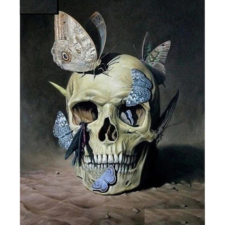 Diamanttavla (R) Butterfly Skull 40x50