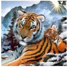 Diamanttavla Mountain Tigers 40x50