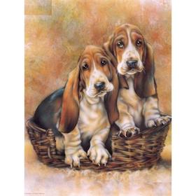 Diamanttavla Beagles 40x50