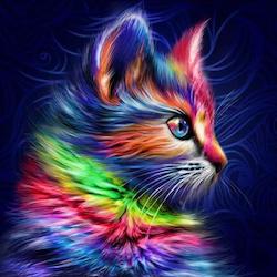 Diamanttavla (R) Color Cat Dark 40x50