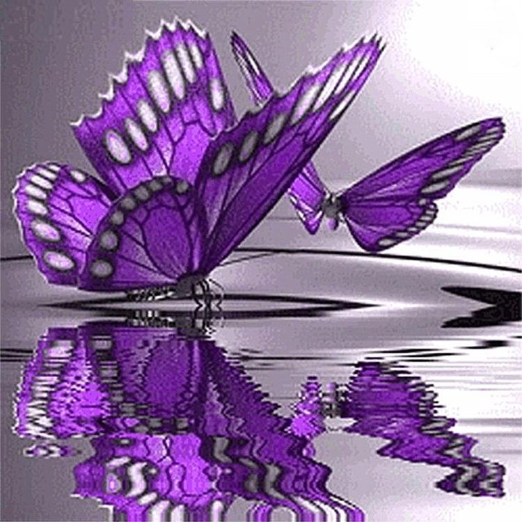 Diamanttavla Fjärilar På Vatten 30x30