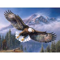 Diamanttavla Eagle  40x50