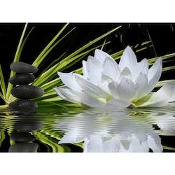 Diamanttavla (R) White Lotus 30x40