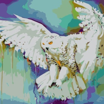 Paint By Numbers Color Owl 40x50