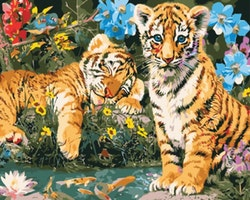 Paint By Numbers Tigerungar 40x50