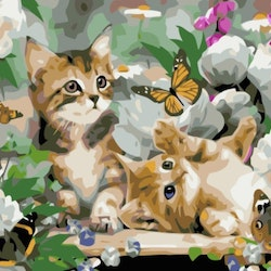 Paint By Numbers Cats And Butterflies 40x50