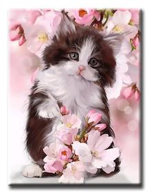 Diamanttavla Cat Cherryflower 40x50