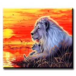 Diamanttavla (R) Sunset Lion 50x70