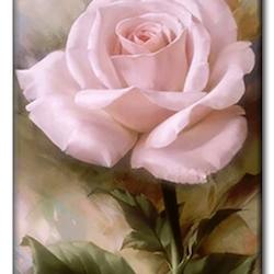 Diamanttavla (R) Pink Rose 30x40