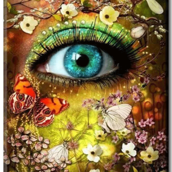 Diamanttavla Butterfly And Flower Eye 40x60