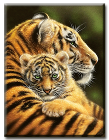 Diamanttavla Tiger Hug 40x50