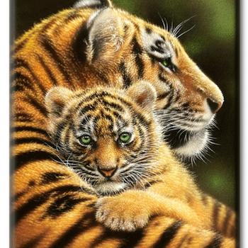 Diamanttavla Tiger Hug 40x50 - Leveranstid 1-3 Dagar