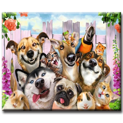 Diamanttavla Funny Dogs 40x50