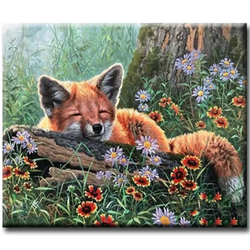 Diamanttavla (R) Sleeping Fox With Flowers 40x50