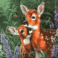 Paint By Numbers Cute Deers 40x50