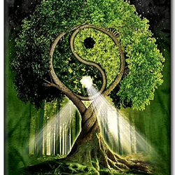 Diamanttavla (R) Tai Chi tree 40x50