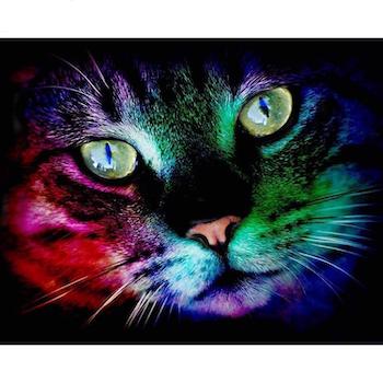 Diamanttavla Color Cat 40x50