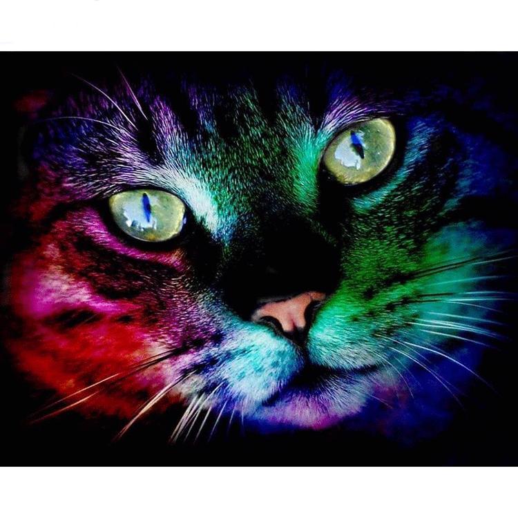 Diamanttavla (R) Color Cat 40x50