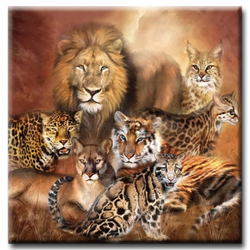 Diamanttavla Big Cats 50x50