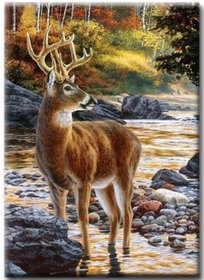 Diamanttavla Deer In River 40x50