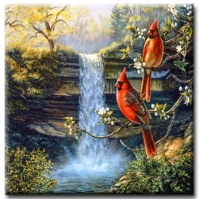 Diamanttavla Birds And Waterfall  50x50