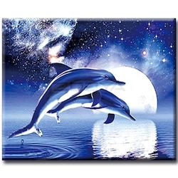 Diamanttavla Dolphin Sky Star 30x40