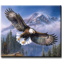 Diamanttavla (R) Eagle 40x50