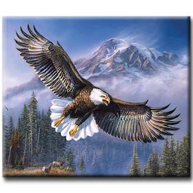 Diamanttavla (R) Eagle 40x50