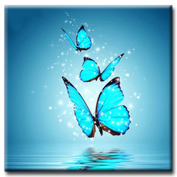 Diamanttavla Sparkling Butterfly 30x30