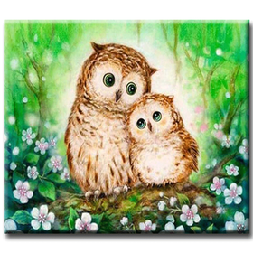 Diamanttavla Cute Owls 40x50