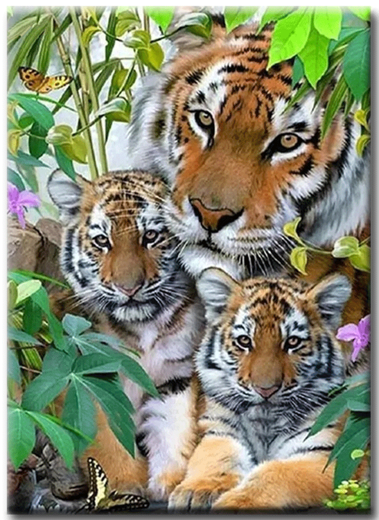 Diamanttavla Tiger With Tigerbabys 50x60