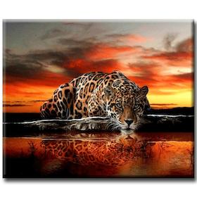 Diamanttavla Leopard I Solnedgång 40x50